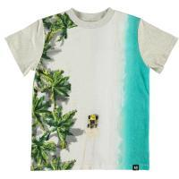 T-shirt Molo jongen buggy wit blauw