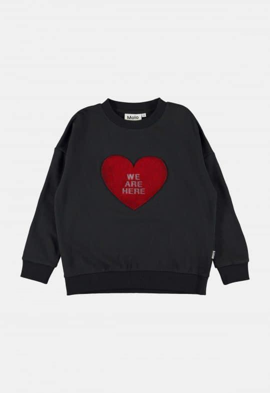 Sweaters en truien Sweater 'Maxi – Black'