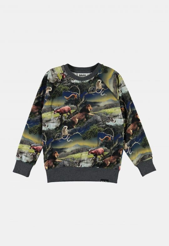 Sweaters en truien Sweater 'Romeo – Future Animals'