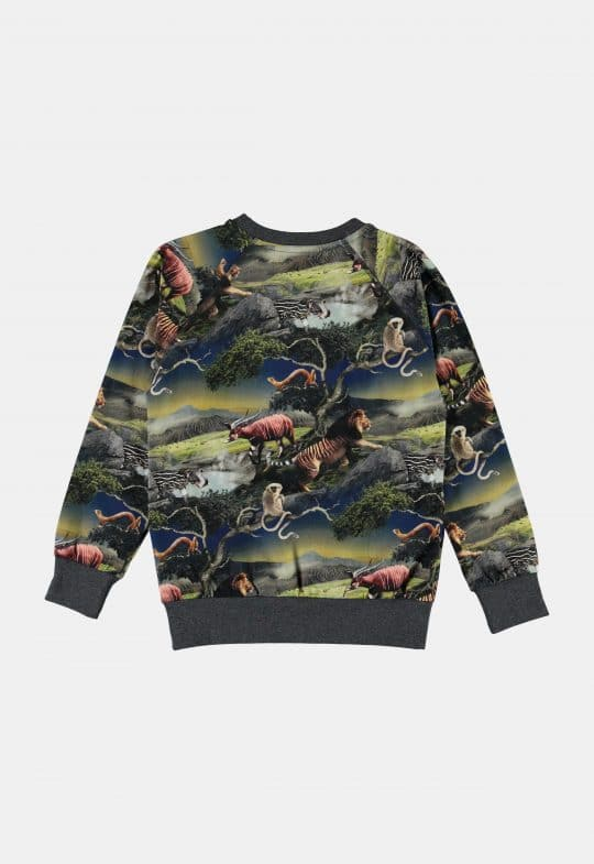 Sweaters en truien Sweater 'Romeo – Future Animals'
